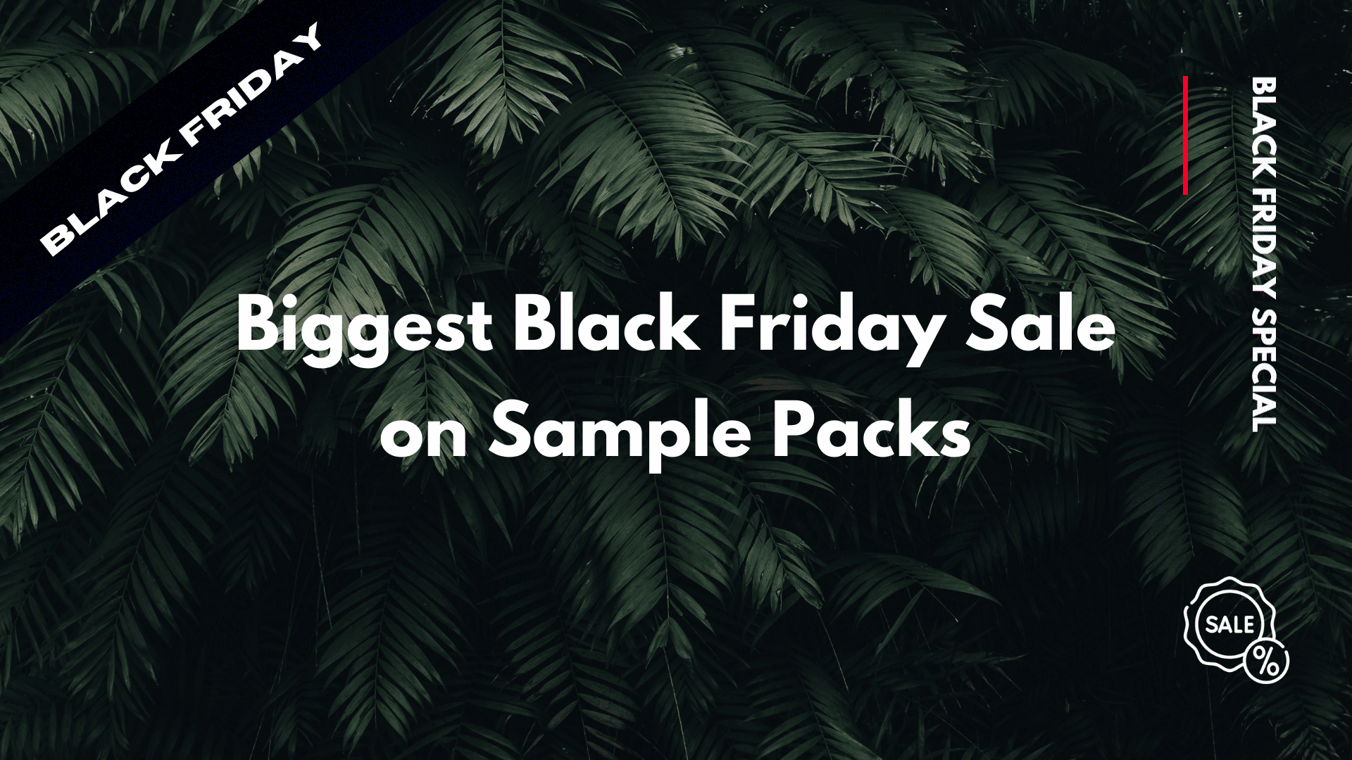 Black Friday Sale Sample packs